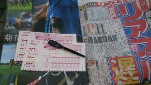 菊花賞 京都競馬場