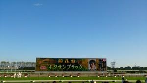 菊花賞 京都競馬場 キタサンブラック